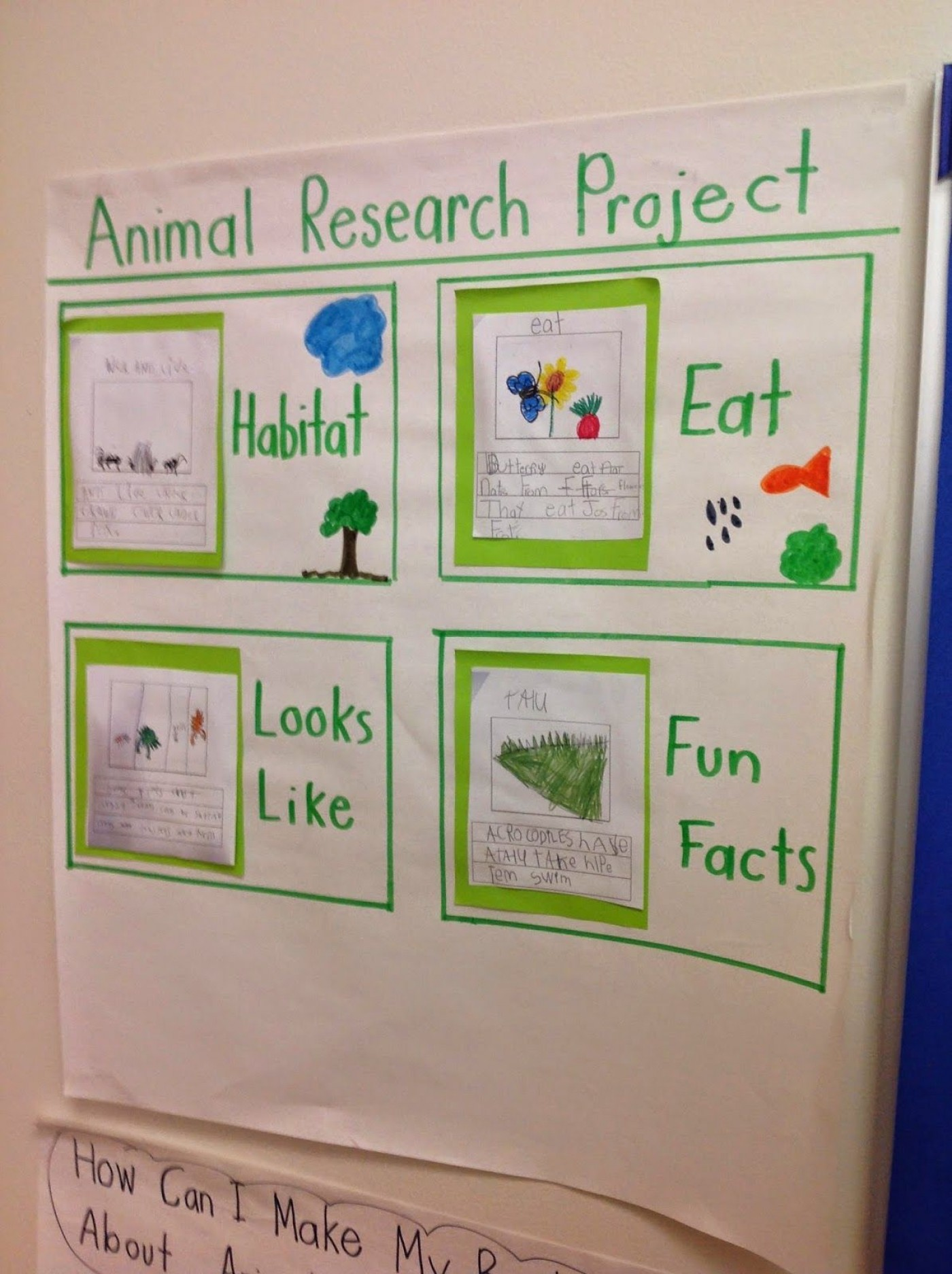 001 Research Paper Animal Awful Ideas Project College Behaviour 1400