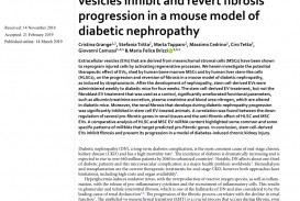 002 Largepreview Research Paper Diabetic Nephropathy Singular Papers