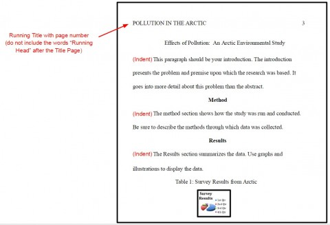 003 Apa Format For Research Paper Imposing Title Page Example References 480