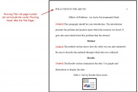 003 Example Apa Format Research Paper Fascinating Sample Psychology