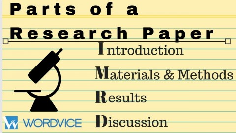 003 Parts Of Research Paper Introduction Wonderful A 480