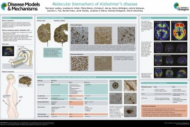 005 Abstract Alzheimers Research Paper Exceptional Alzheimer's