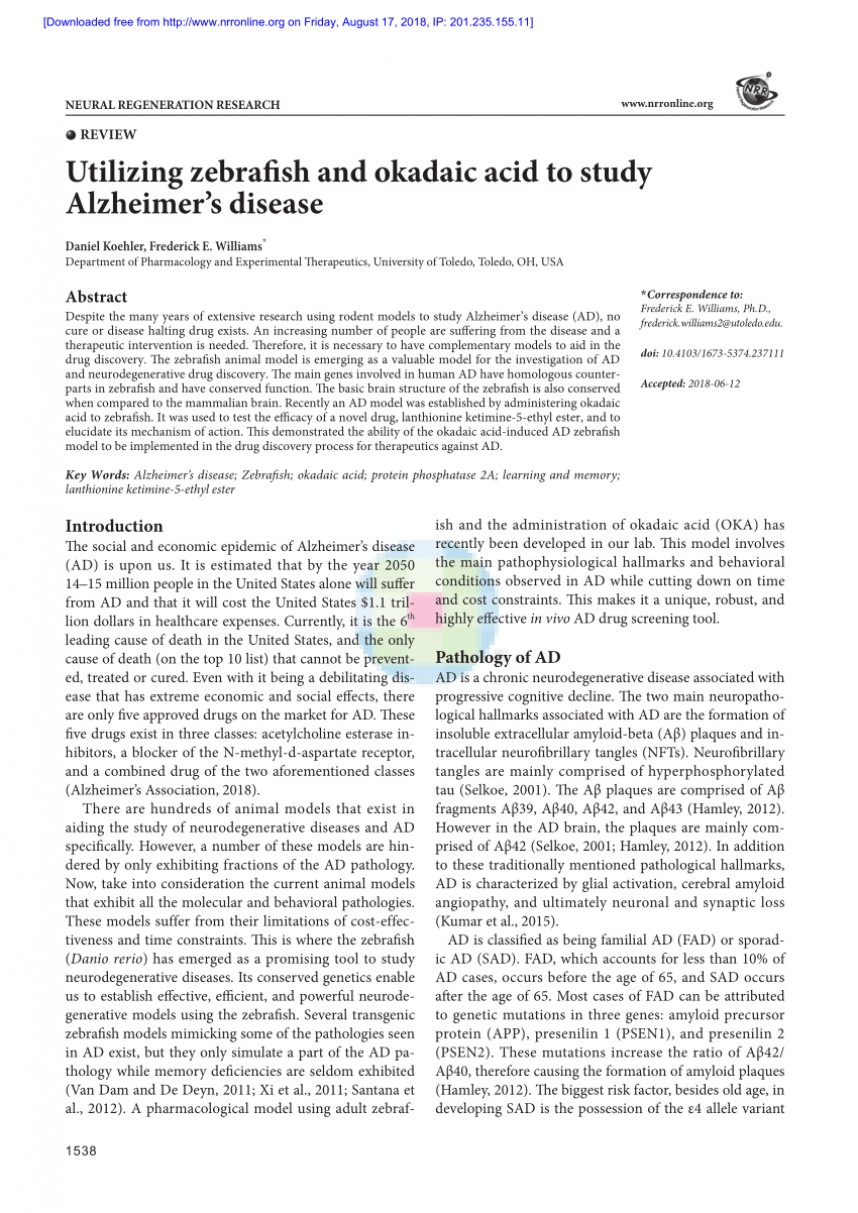 005 Alzheimers Disease Research Paper Impressive Alzheimer's Conclusion Pdf Outline