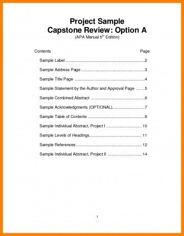 005 Apa Table Of Contents Example Ready Screenshoot Th Edition Template Format Research Paper Style Stunning With 360