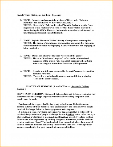 005 Poverty Research Paper Outline Thesis Statement Examples For Essays Amazing In America 480
