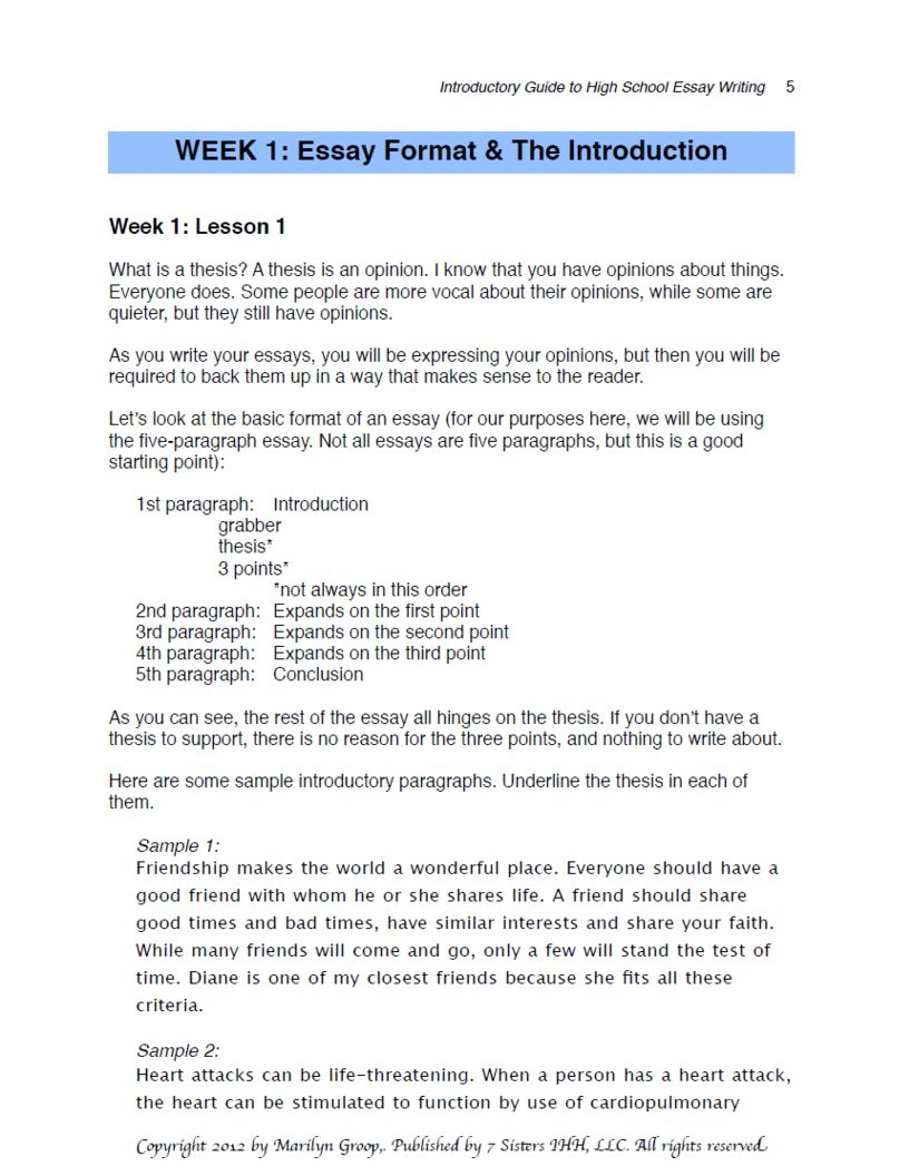 005 Uncategorized20riendship Essays True Examples In Hindi Writing Effective Thesis Statements Point Statement Research Stupendous 3 Full