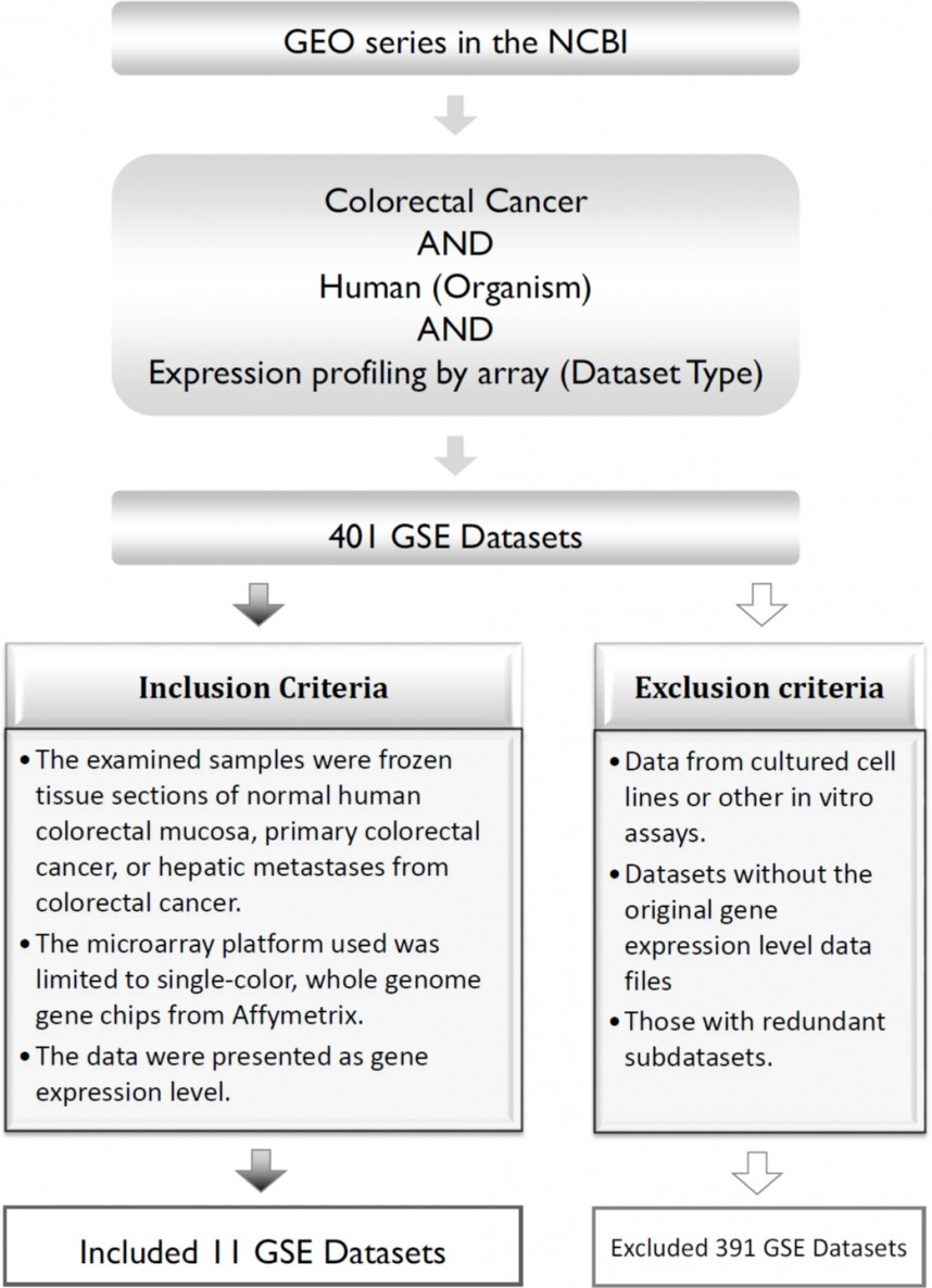 006 Colon Cancer Research Paper Outline Fig Imposing 868