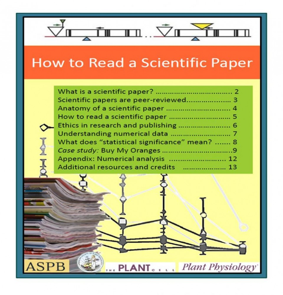 006 How To Read Researchs Picture1 982x1024 Imposing Research Papers Reddit Fast Free 960