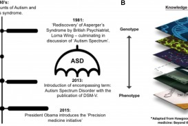 007 Research Paper Fpsyg G001 Phenomenal Autism Example About On In The Classroom Apa Format
