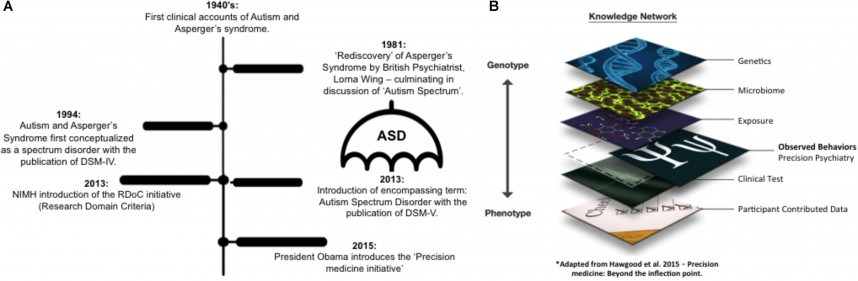 007 Research Paper Fpsyg G001 Phenomenal Autism On Outline And Early Intervention Example About