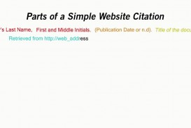008 Citing Websites In Research Paper Mla Exceptional A Website Format
