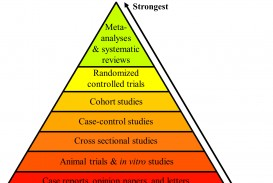 009 Hierarchy Of Evidence No Not1 Autism Research Paper Top Examples