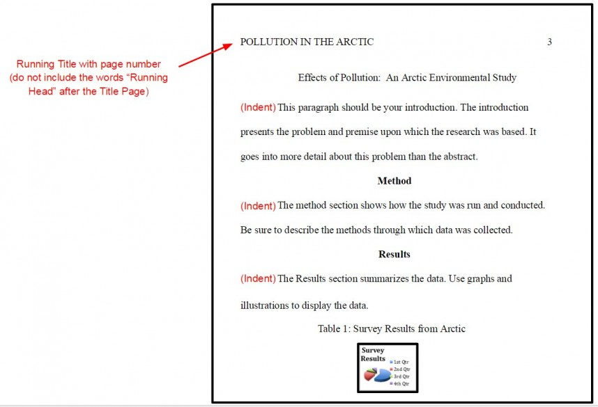 009 Proper Order Of Sections Research Paper In Apa Format Marvelous A 868