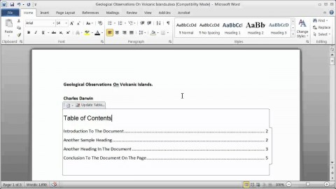 009 Research Paper How To Make Table Of Contents In Exceptional A 480