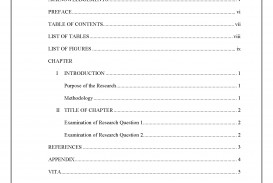 010 Apa Style Research Paper Example With Table Of Contents Contentsborder Stunning