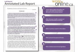 010 Labreport Annotatedfull Page 03 Example Of Discussion Part Research Stunning A Paper Findings And In Results Qualitative Conclusion