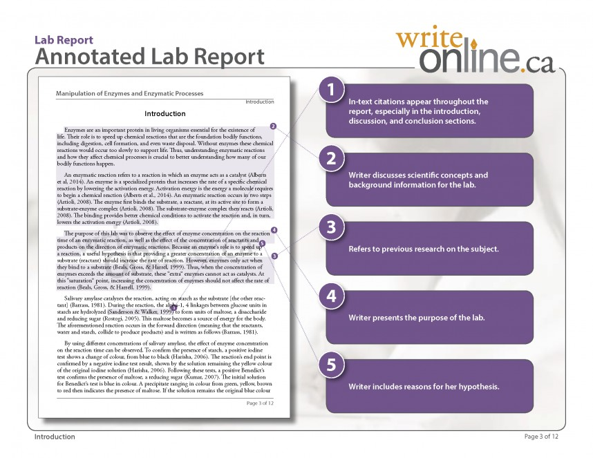 010 Labreport Annotatedfull Page 03 Example Of Discussion Part Research Stunning A Paper Results And In Qualitative Ppt