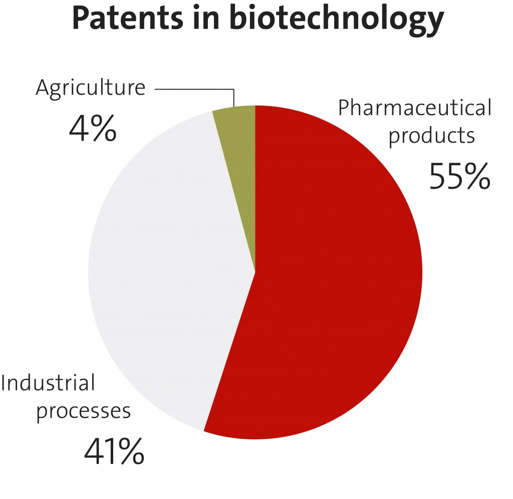 010 Medical Biotechnology Topics For Research Paper Pie Chart Stunning Large