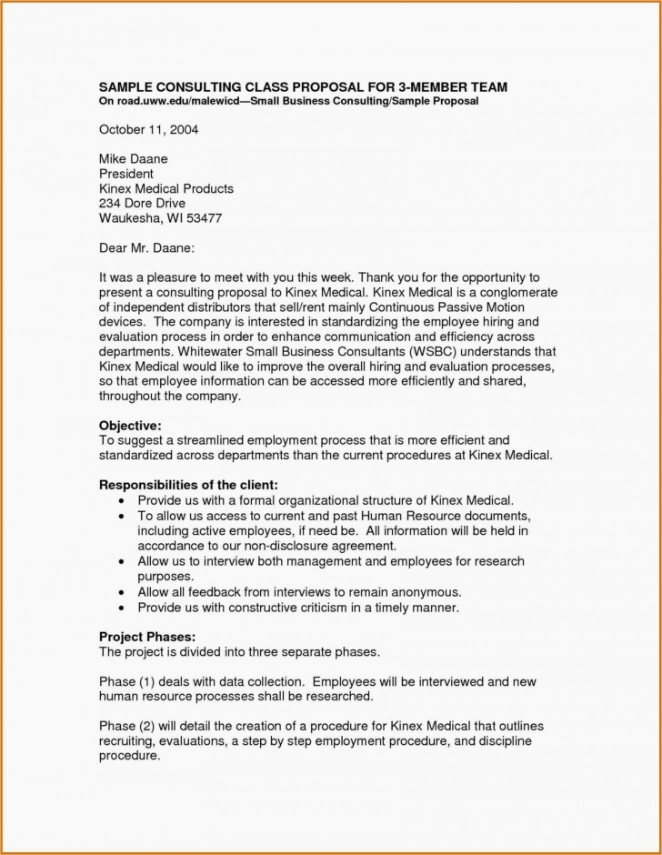 012 Action Research Paper Examples Pdf Consultant Business Plan Project Management Consulting Nfmoshu Com Template Puter Samples Marketing Sa Doc Free Sample Example Singular 728