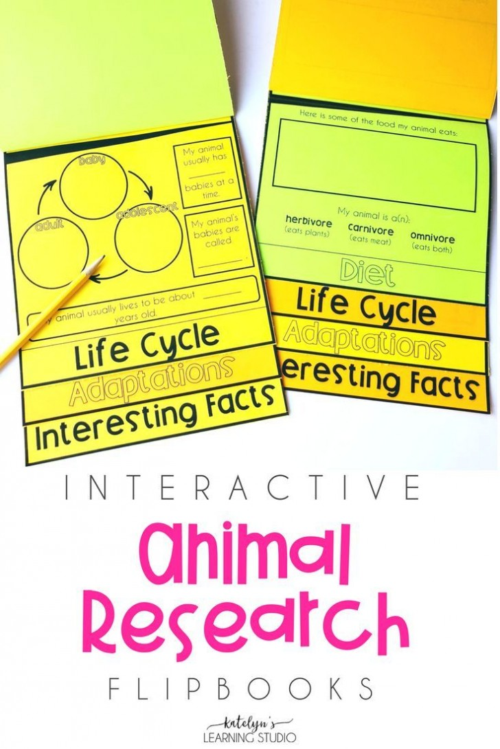 012 Research Paper Animal Awful Ideas Project College Behaviour 728