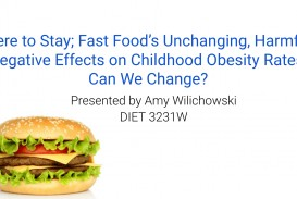 013 Childhood Obesity Research Paper Screen Shot At Rare Outline Pdf