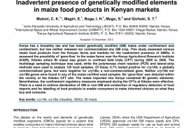 013 Research Paper Largepreview Gmo Shocking Introduction