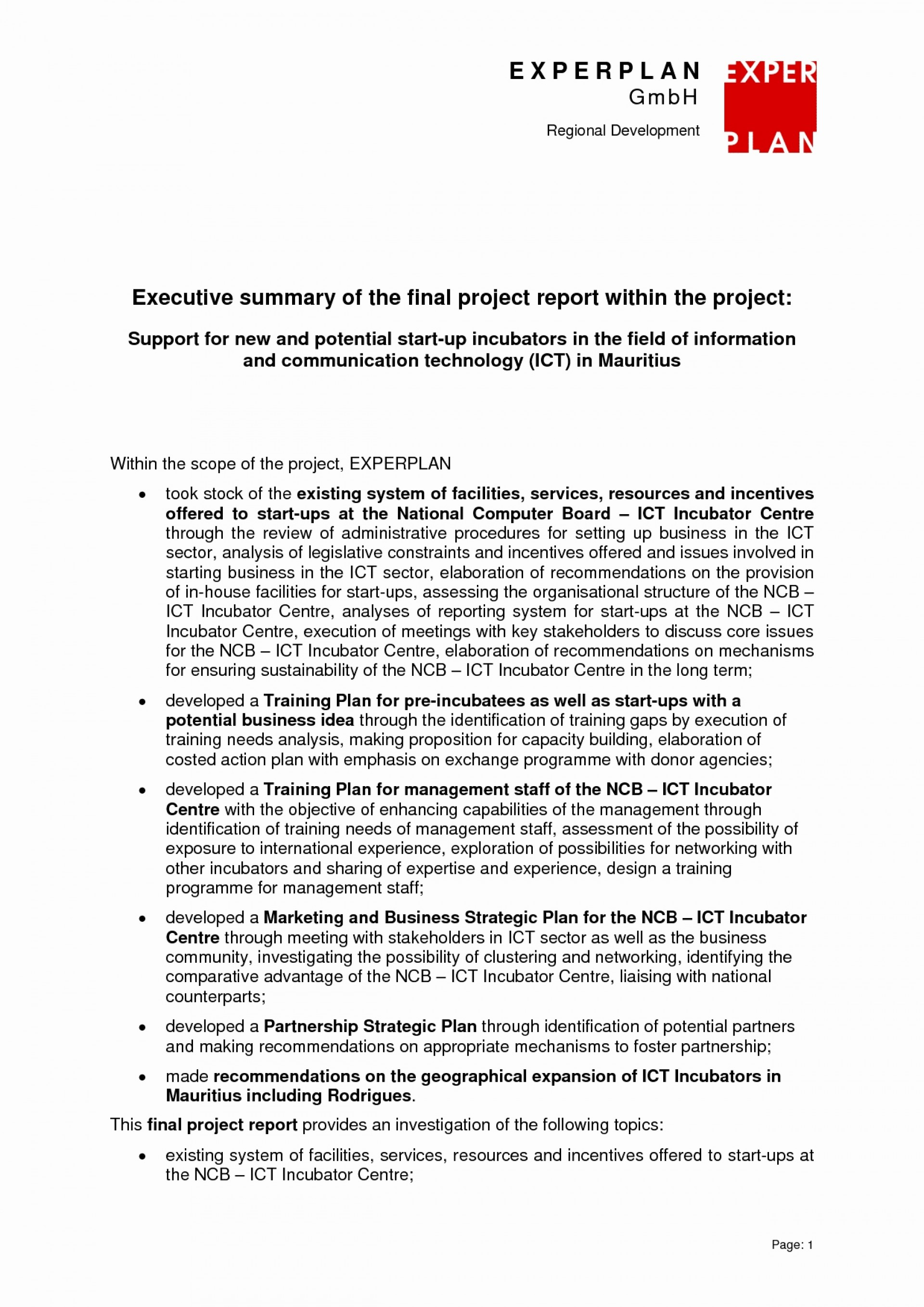 014 Executive Summary Research Paper Example 20project Management Template Plan Luxury Experience Unforgettable 1920