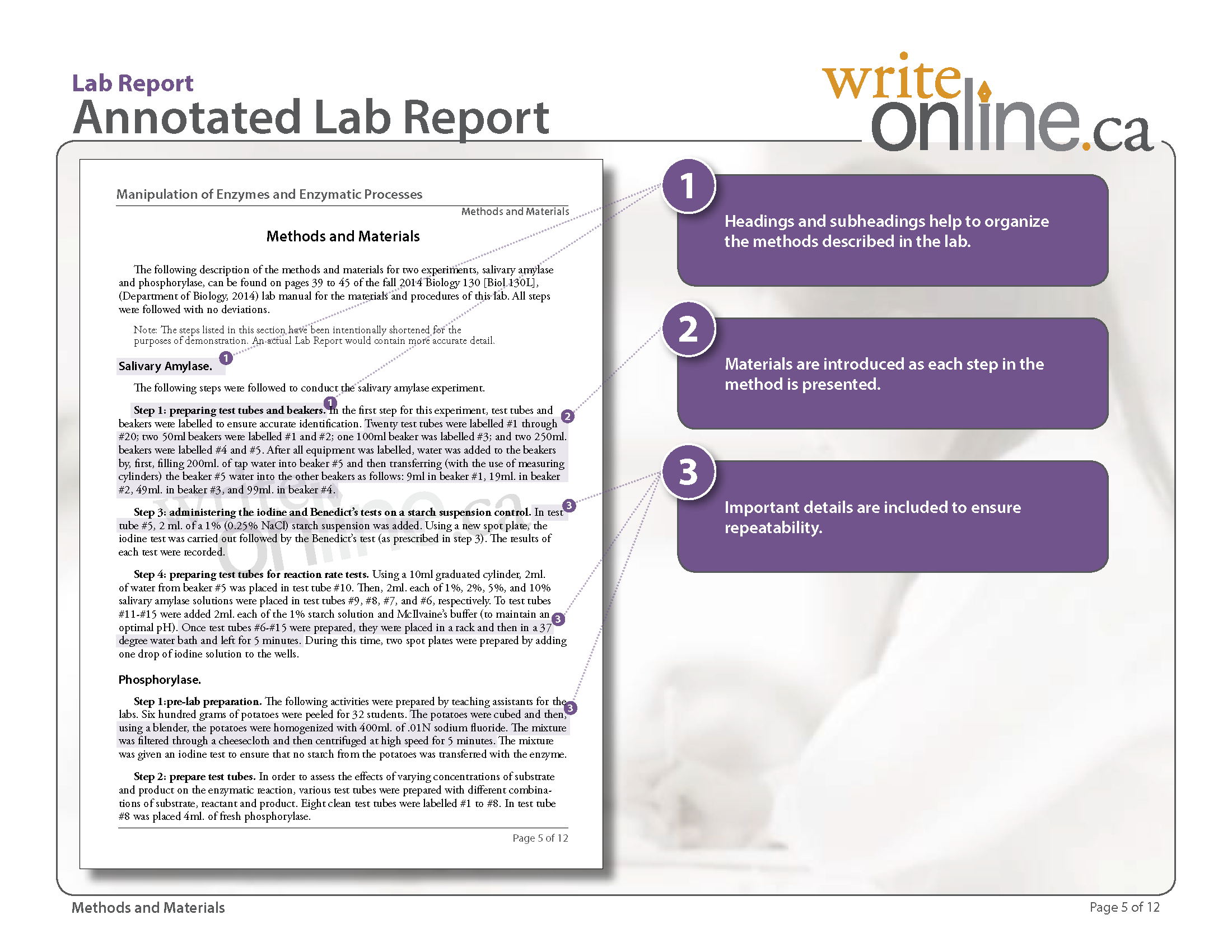 015 Labreport Annotatedfull Page 05 Research Paper How To Write The Methods Section Of Impressive A Pdf Full