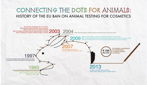 016 Animal Rights Research Paper Topic Ideas Eu Cosmetic Ban History Archaicawful 480
