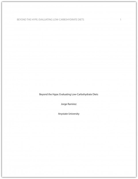 017 Research Paper Format Stunning Apa Writing Style Sample 2010 480
