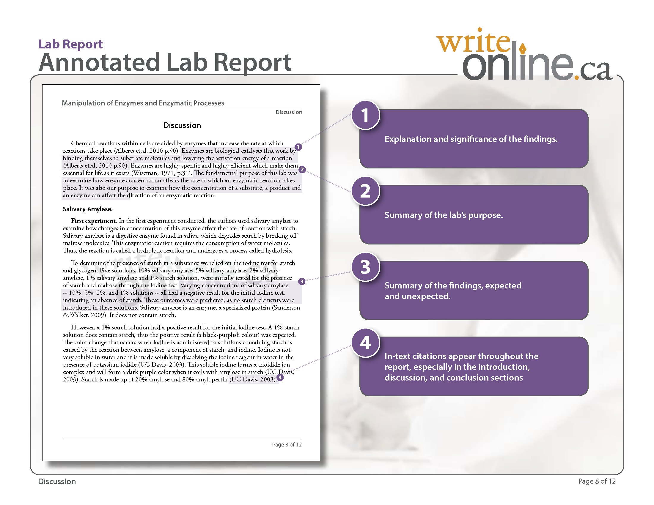 018 Labreport Annotatedfull Page 08 Research Paper Example Of Result And Discussion In Fearsome Pdf Full