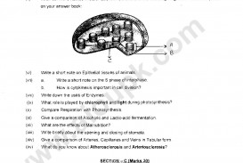 019 Biology Ssc Annual Examinations Part Page Research Paper Topics High Unique School For Students