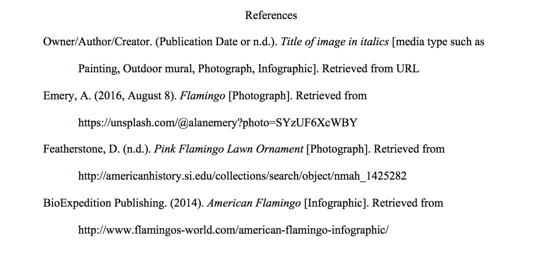 work cited page example apa