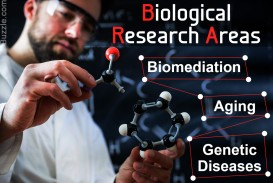 020 Research Paper In Field Of Biology Topics High Unique School For Students