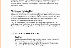 022 Executive Summary Research Paper Example Ofeting Report Format For Unforgettable