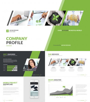 024 Company Profile Health Ppt Template Templates For Research Paper Phenomenal Presentation Powerpoint Format 360