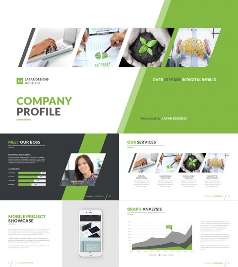 024 Company Profile Health Ppt Template Templates For Research Paper Phenomenal Presentation Powerpoint Format 480