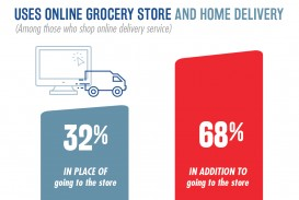 024 Online Grocery Shopping Research Paper Nielsen  Stirring Papers On In India
