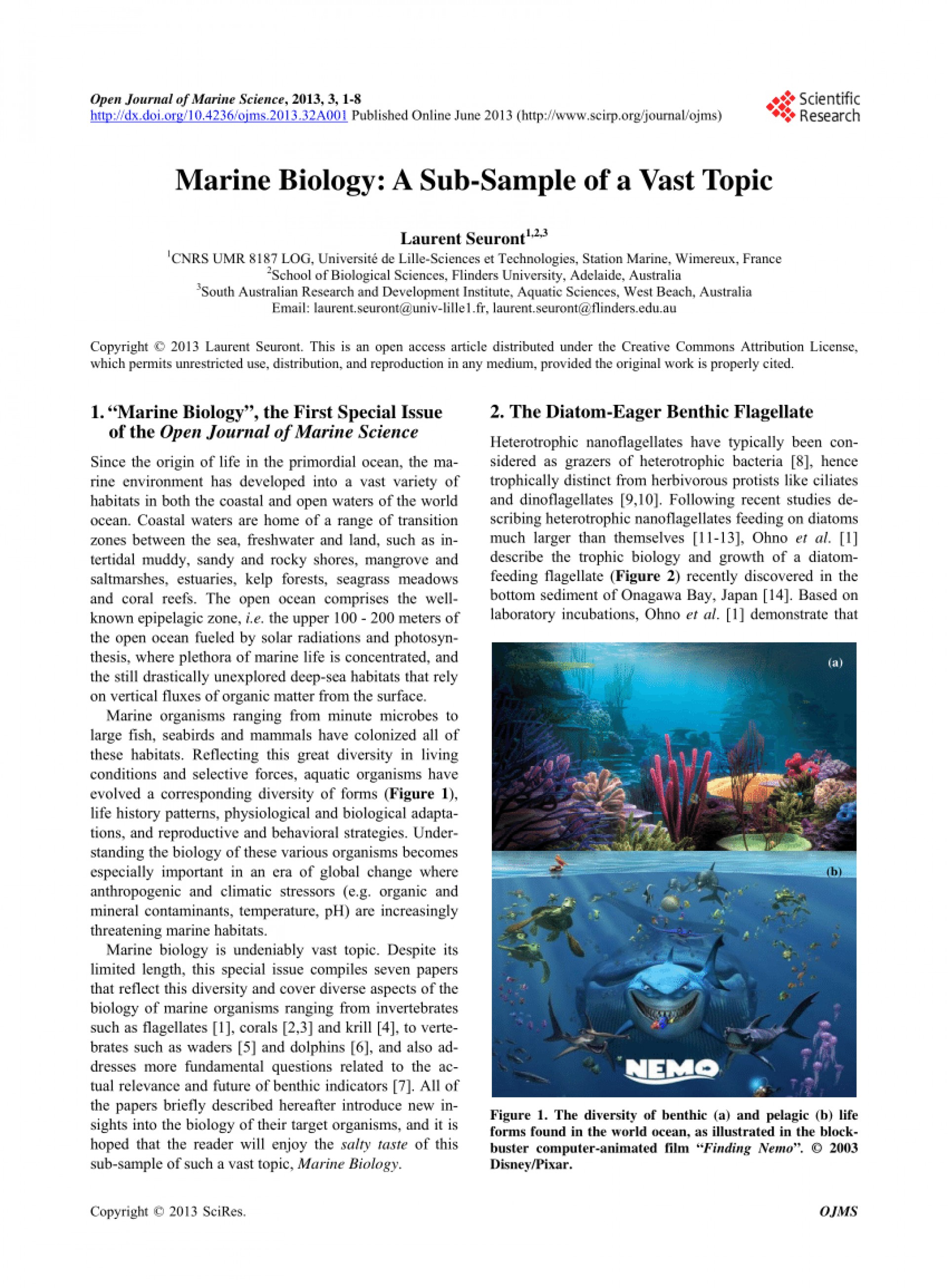 026 Largepreview Research Paper Marine Biology Phenomenal Topics 1920