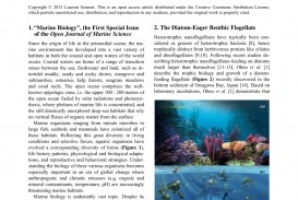 026 Largepreview Research Paper Marine Biology Phenomenal Topics